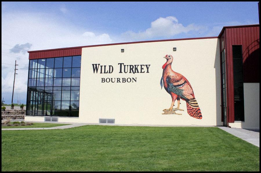 Wild Turkey 3 edited