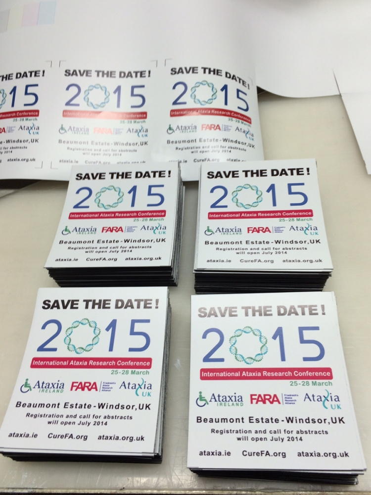 Save the Date 2015 decal Sign Studios