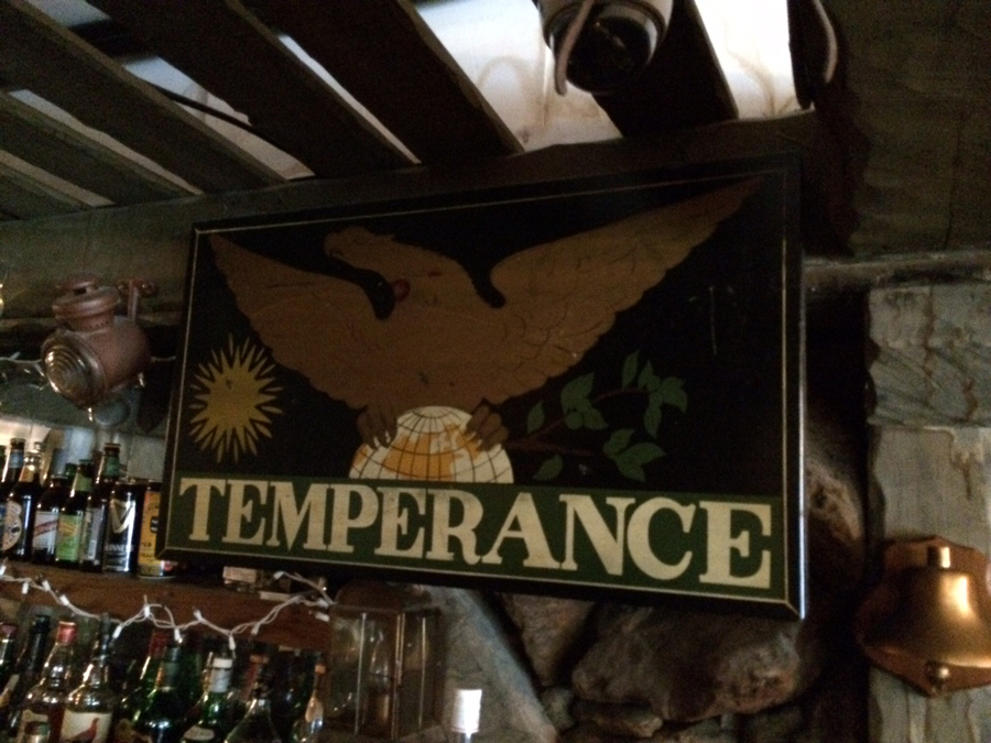 Temperance resturants Sign Studios